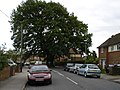 Fletcher Road - geograph.org.uk - 1308067.jpg