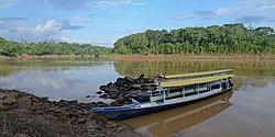 Flickr - ggallice - Rio Tambopata.jpg