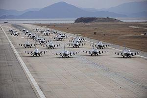 Flock of Falcons.jpg