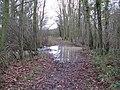 Flooded bridlewaysouth of Gennets Farm - geograph.org.uk - 1614024.jpg