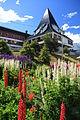 Flower garden in Ushuaia (5543600366).jpg