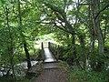 Footbridge over the Bollihope Burn - geograph.org.uk - 1423869.jpg