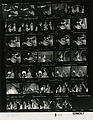 Ford B0593 NLGRF photo contact sheet (1976-07-07)(Gerald Ford Library).jpg