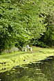 Forest Park, Springfield, MA 01108, USA - panoramio (24).jpg