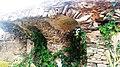 Fort fredensberg2016 Old Ningo.jpg