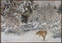 Fox in Winter Landscape (Bruno Liljefors) - Nationalmuseum - 23703.tif