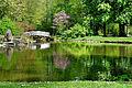 Frühling im Bad Mergentheimer Kurpark. 26.jpg