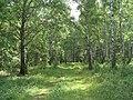 G. Miass, Chelyabinskaya oblast', Russia - panoramio (40).jpg