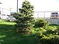 GC1ZC5C - panoramio.jpg