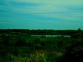 Gallus Slough - panoramio.jpg