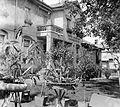 Garden Fortepan 4750.jpg
