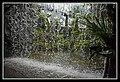 Gardens by the Marina Bay Waterfall-08 (8323489486).jpg