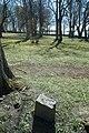 Garnisonskyrkogården - KMB - 16001000095164.jpg
