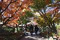 Genji museum13s3s4500.jpg