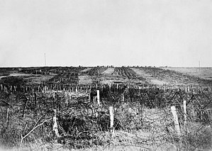 Battle of Drocourt-Quéant Line - German wire at Quéant, 4 October 1918