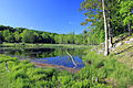 Gfp-new-york-wellesley-island-state-park-pond-on-the-island.jpg