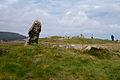 Giants Graves - geograph.org.uk - 3945113.jpg