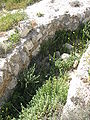 Givat HaArbaa IMG 0536.JPG
