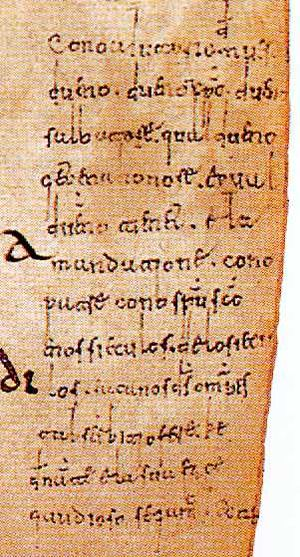 Glosas Emilianenses - Detail of the gloss from page 72.