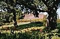 Gråsten-château park-3.jpg