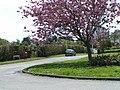 Granary Lane, Budleigh Salterton - geograph.org.uk - 1272181.jpg