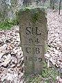 Grenzstein von 1767 auf dem Rauhkasten DSCN4310 02.jpg