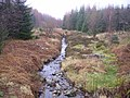 Grizedale Beck - geograph.org.uk - 323380.jpg