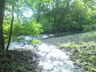 Große Steinau Sidestream of the river Sieber