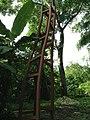 Guanacaste Province, Punta Islita, Costa Rica - panoramio (34).jpg