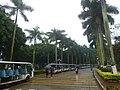 Guangdong Ocean University - P1580823.JPG