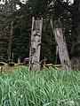 Gwaii Haanas National Park (27520039096).jpg
