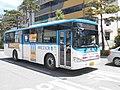 Gyeonggi Gwangju Bus 111.JPG