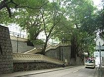HK KingGeorge5 MemoPark Trees 60402 Up6.jpg
