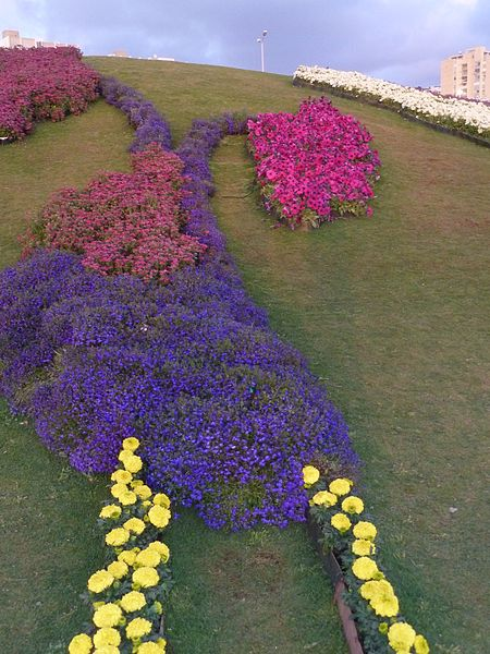 File:Haifa International Flower Exhibition P1130958.JPG
