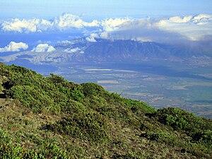 Hawaiian tropical high shrublands - Slopes of Haleakalā, Maui.