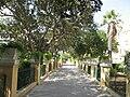 Hastings Gardens.JPG