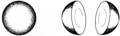 Hemispheres2 (PSF).png