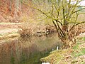 Here You Can See How High The Water Was - panoramio.jpg