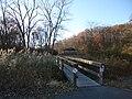 High Pond Trail.JPG