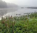 Hiieveski järv.jpg