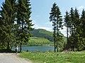 Hillebachsee, Niedersfeld - panoramio.jpg