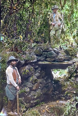 Hiram Bingham III - Bingham (upper right) with a local guide on a jungle bridge at Espiritu Pampa in Peru, hand-colored glass slide, 1911