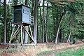 Hochsitz vor Laubwald.jpg