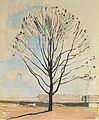 Hodler - Der kahle Baum - 1917.jpeg