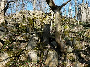Hohe Acht - Image: Hohe Acht Basalt