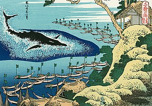 Whaling In Japan History | RM.