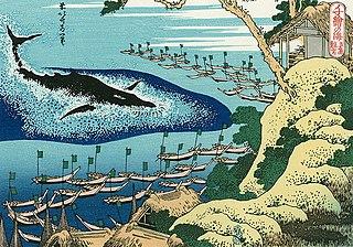 千絵の海 五島鯨突