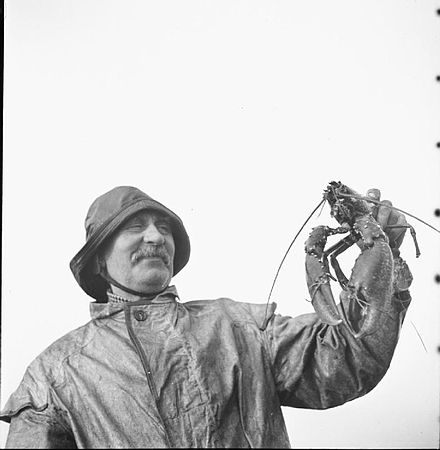 A Lindisfarne fisherman in 1942 Holy Island Plays Its Part- Everyday Life on Lindisfarne, 1942 D6771.jpg