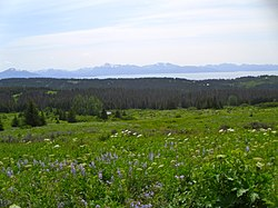 View from Diamond Ridge on the Homestead Trail, showing Kachemak Bay and the Kenai Mountains