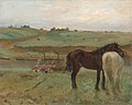 Horses in a Meadow.jpg